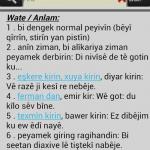 Ücretsiz WQFerheng Kürtçe-Türkçe Sözlük Android Uygulaması