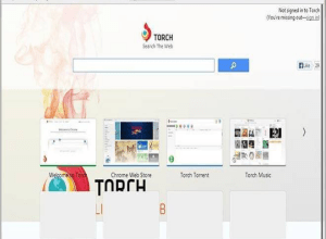 Torch Browser indir